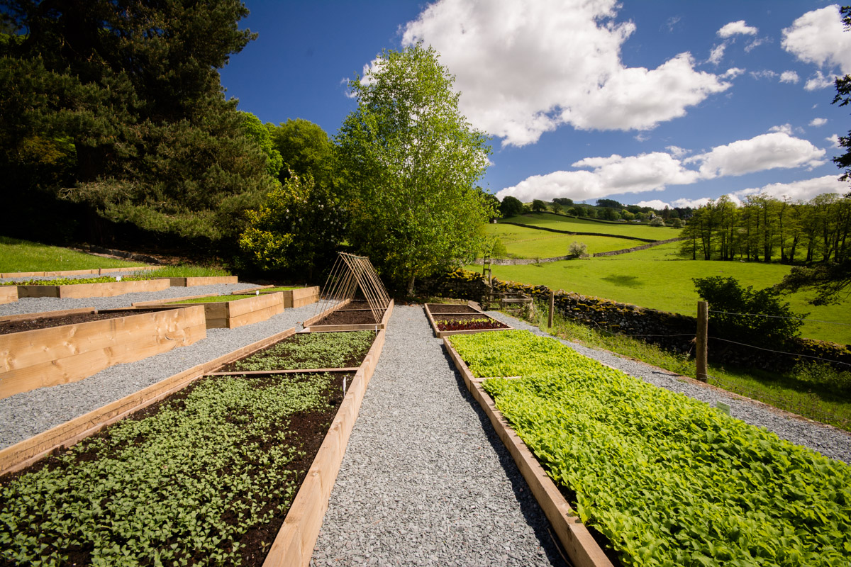 Kitchen Garden | The Samling Luxury Country Hotel in the